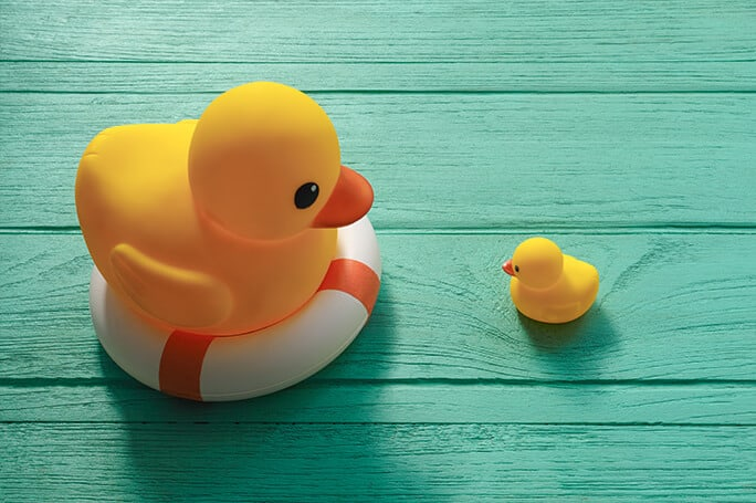 two rubber ducks